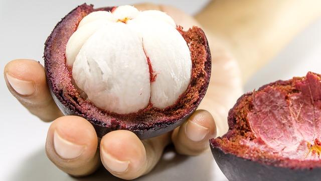 Mangoustan fruit sec